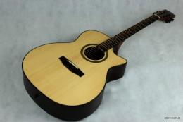 Akustische_Gitarre_D-Series_DL-260_SC_NM_8