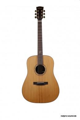 Akustische_Gitarre_Westerngitarre__Dove_O-Serie_DR-55_1
