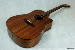 Akustische_Gitarre_Westerngitarre__Dove_O-Serie_DS-51C_5