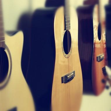 akustische_Gitarren_Dove_Natpro_Sound_1