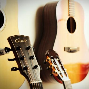 akustische_Gitarren_Dove_Natpro_Sound_2
